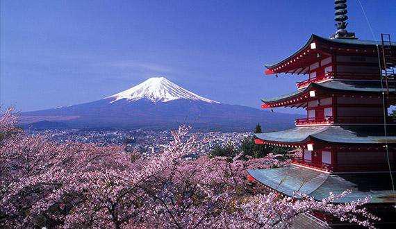 用什么物流寄到日本?EMS_DHL_日本专线国际集运转运