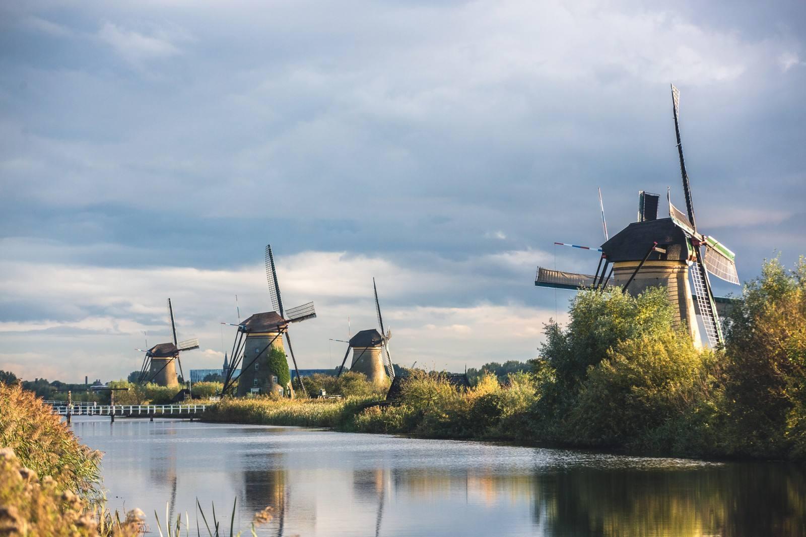 牛气国际物流,荷兰集运意大利美国欧洲转运公司
