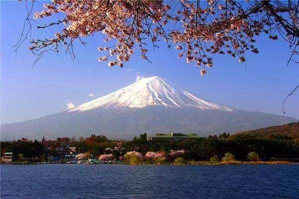 国际物流寄到日本食品零食饮料多少钱